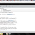 Bald Headed Bugga Bat Email 23