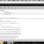 Bald Headed Bugga Bat Email 24