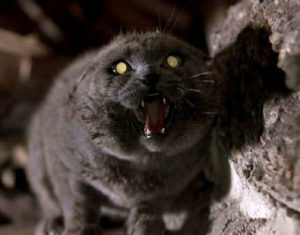 Pet-Sematary-church-cat