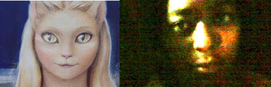 Raven Cat Eyes Vis a Vis Feline Lyran Woman Entity